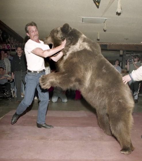 Bear Wrestling 2.JPG
